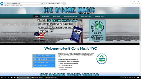 ICE B'GONE MAGIC SALT NEW YORK CITY